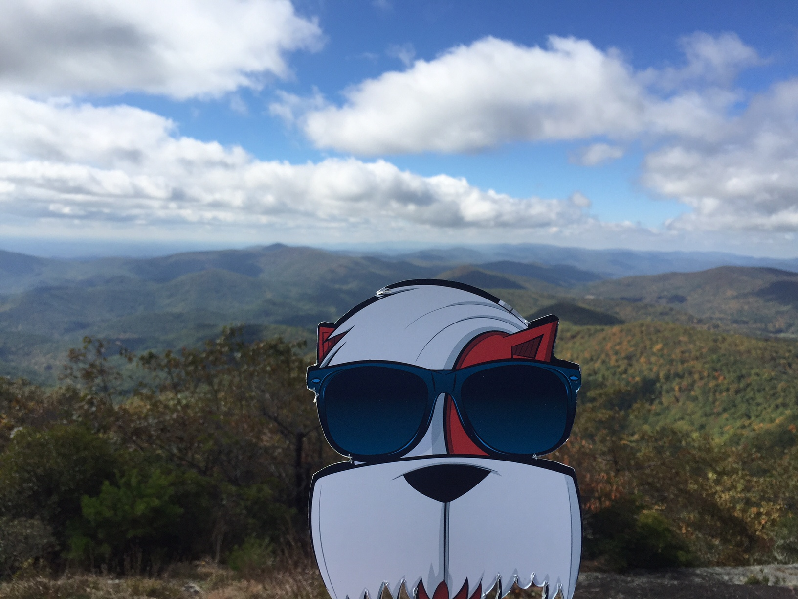 Image perceived to contain Glasses Goggles Life Buoy  on the Moppy and I Tackle an Appalachian Journey—205,485 Steps at a Time - Marietta & Kennesaw GA page