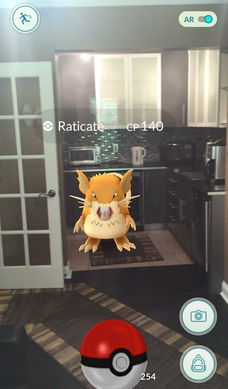 Pokemon GO example image