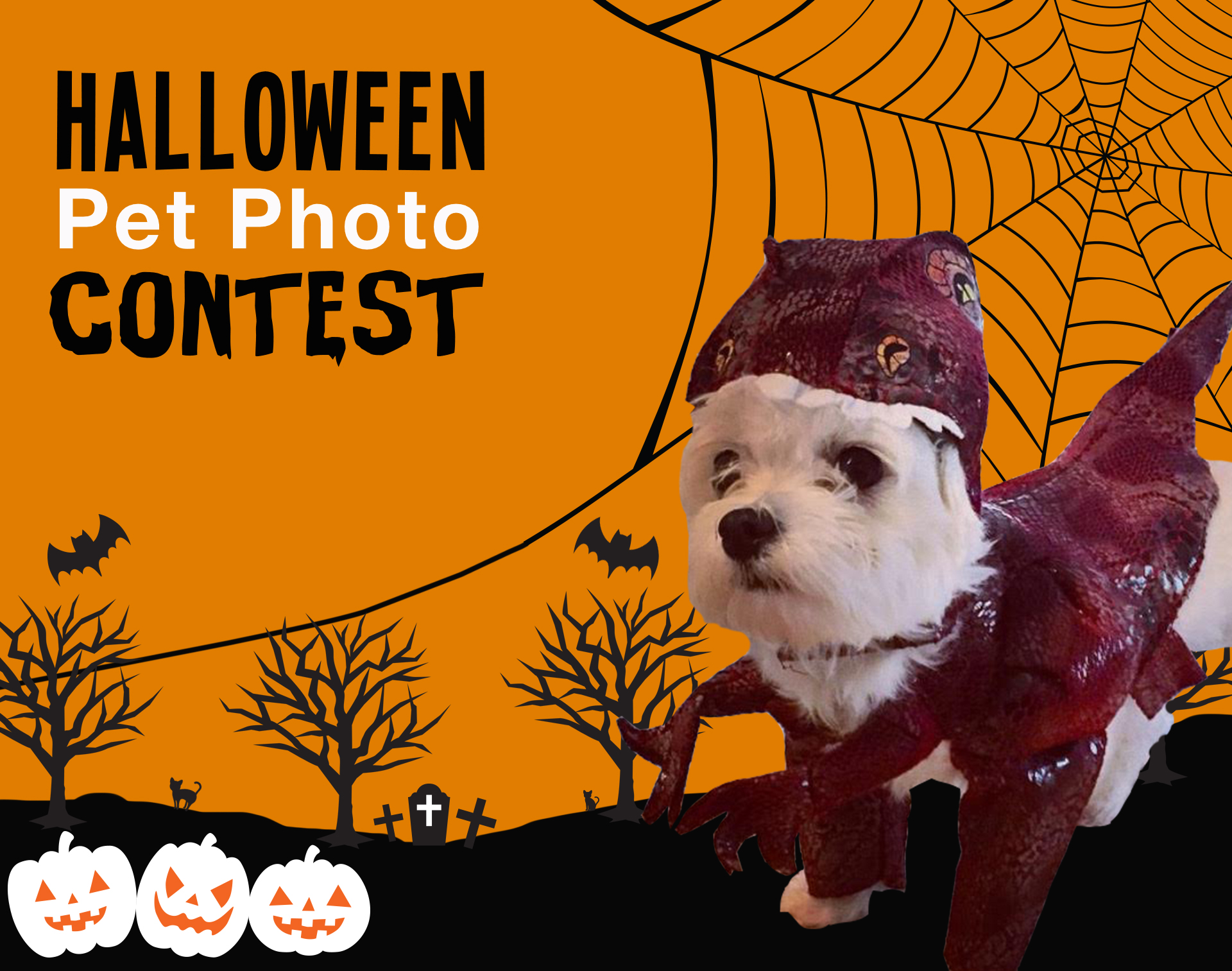 image on page for perceived to contain brochure flyer poster logo trademark - Pet Halloween Photo Contest