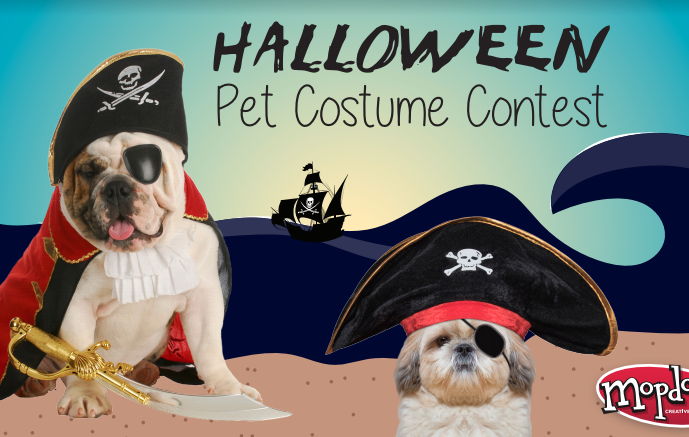 Image perceived to contain People, Person, Human, Ship, Vessel, Flyer, Poster, Hat, Architecture, Spire, Steeple, Tower, Animal, Canine, Dog, Mammal, Pet, Pointer, Cap on the 's Pet Costume Contest 2017! - Atlanta & Kennesaw GA Web Design page