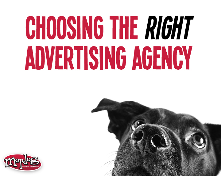 Image perceived to contain Animal, Canine, Dog, Mammal, Pet, Pug, Poster, Brochure, Flyer, Paper on the Choosing the Right Advertising Agency - Marietta & Kennesaw GA page